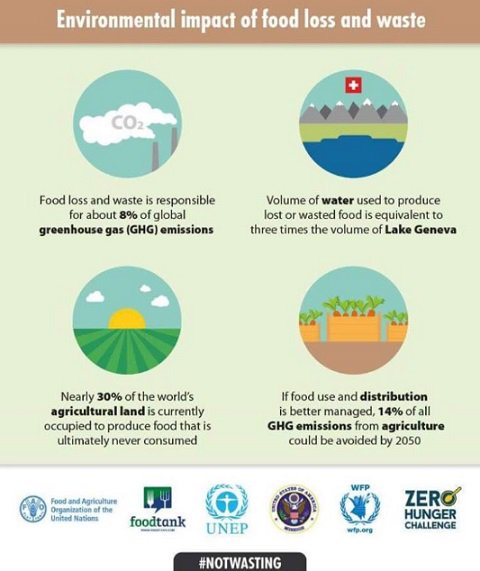 What are the environmental impacts of food loss and waste? Find out more: https://t.co/srhSO63yRb #UNFAO #notwasting https://t.co/ronW6n3viQ