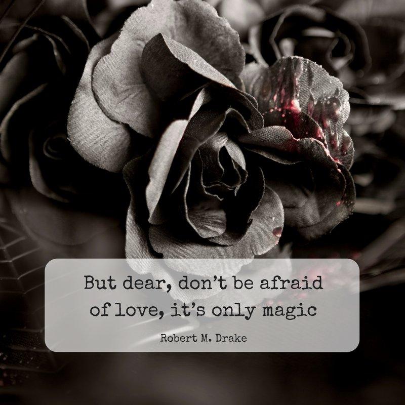 #poetry #poem #amwriting #amreading #writerlife #literature #philosophy #love #inspiration #beautifulwords