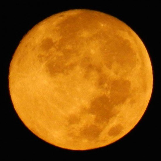 """HARVEST MOON & LUNAR ECLIPSE! Full moon FRIDAY is referred to as a """"Harvest Moon"""". Also LAST lunar eclipse of year. https://t.co/JUqaFL4ISC"""
