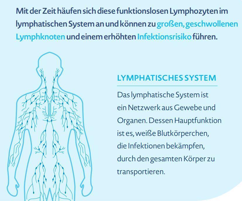 Schön Pdf Anatomie Und Physiologie Arbeitsblatt Fotos - Menschliche ...