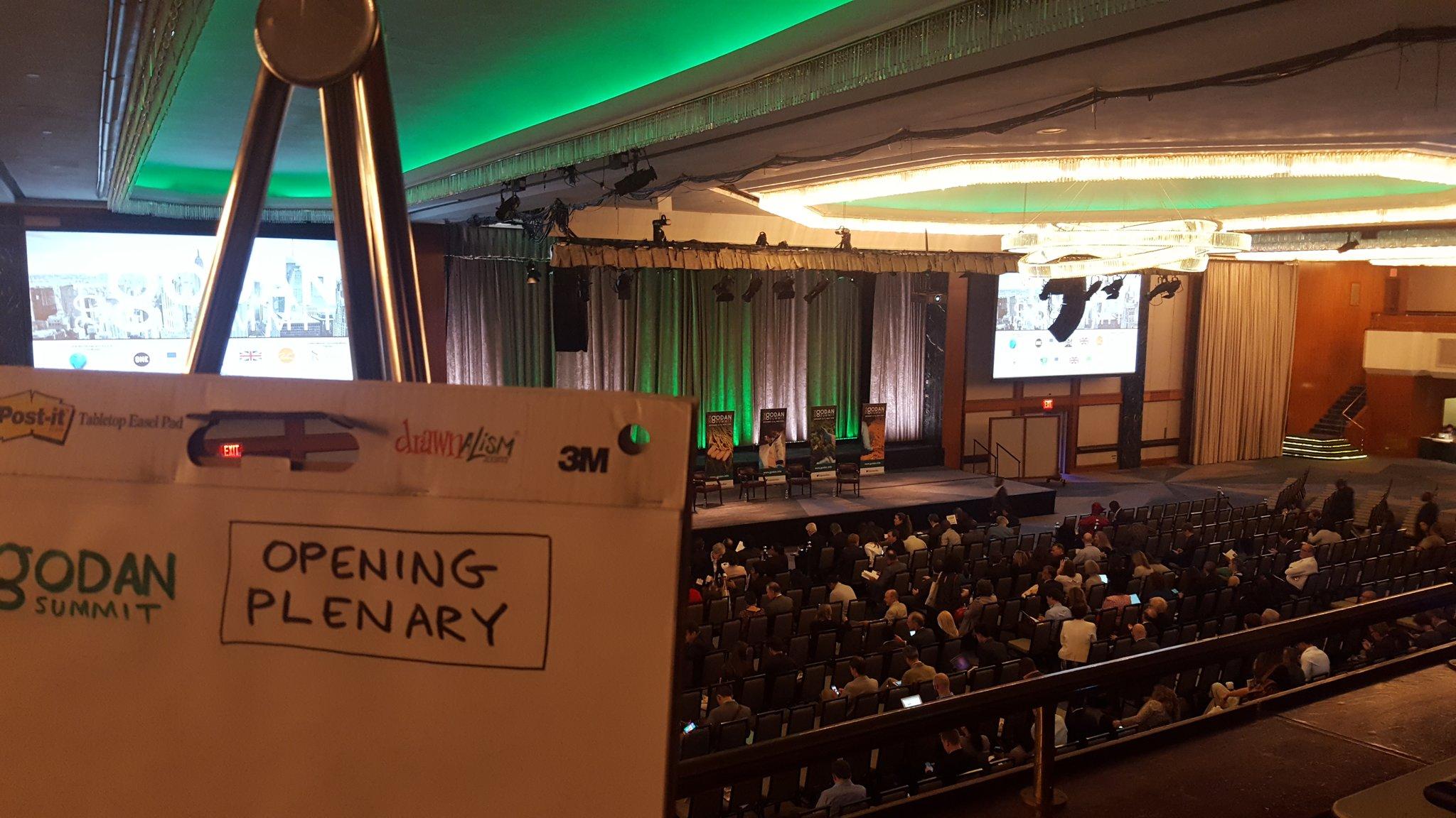 Waiting to start the Opening Plenary at #GODANSummit2016 https://t.co/5VrkrUpYhq