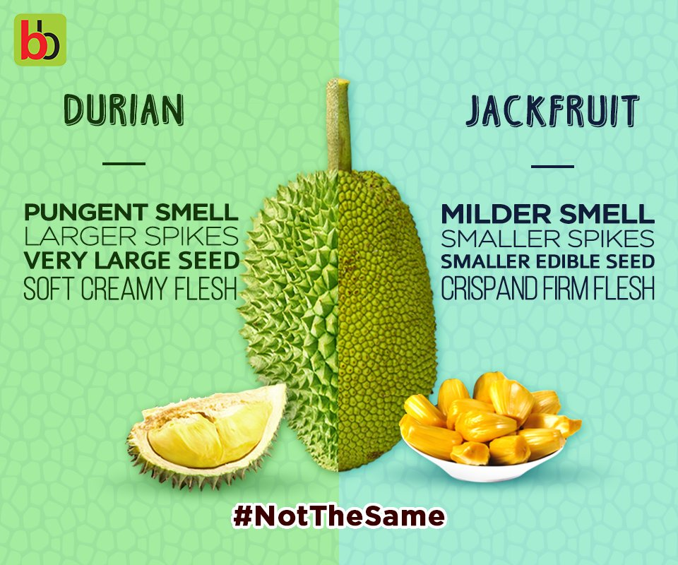 Durian Jackfruit Pictures