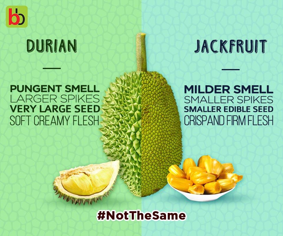 Durian Jackfruit Pictures