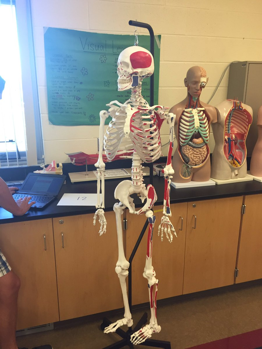 BHS Science on Twitter: \