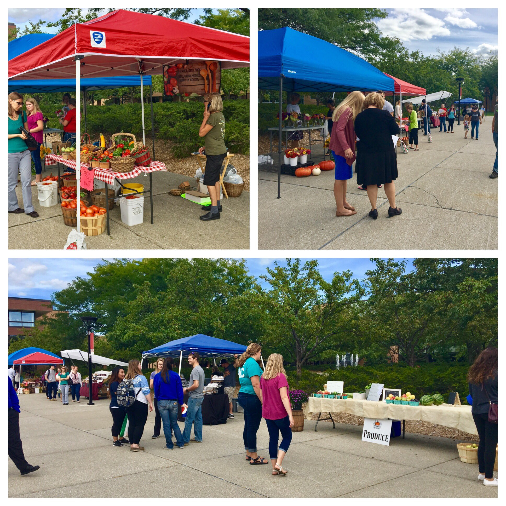 Go check out the SVSU farmers market! They're here until 5:30 today with some great stuff! #WeCardinal https://t.co/qboWPYzSyf