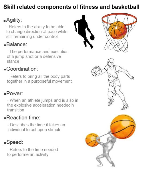 Fitness Workouts: Basketball Fitness Workouts