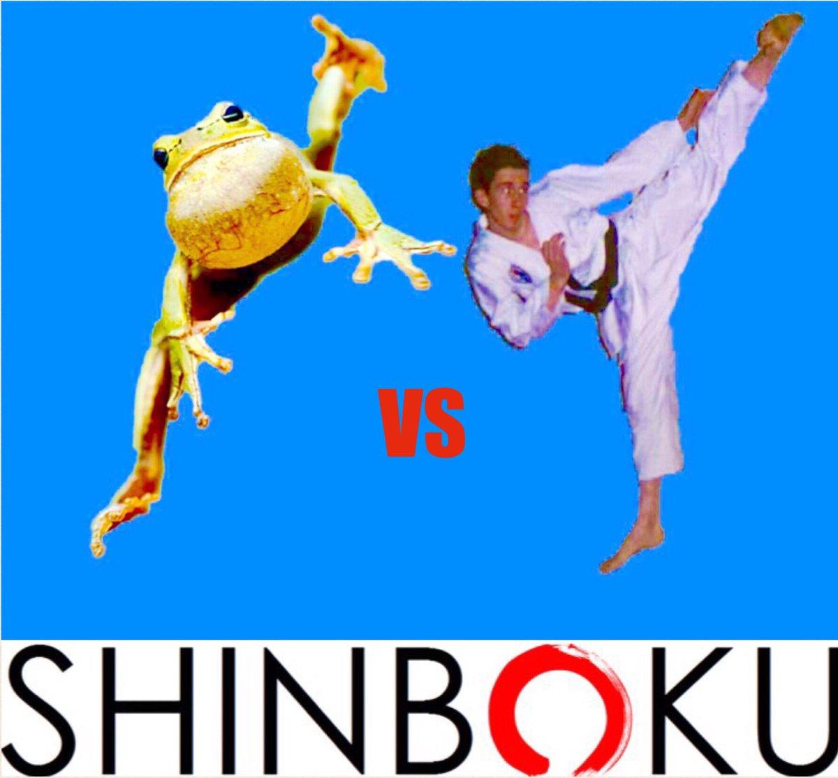 SHINBOKU on Twitter: