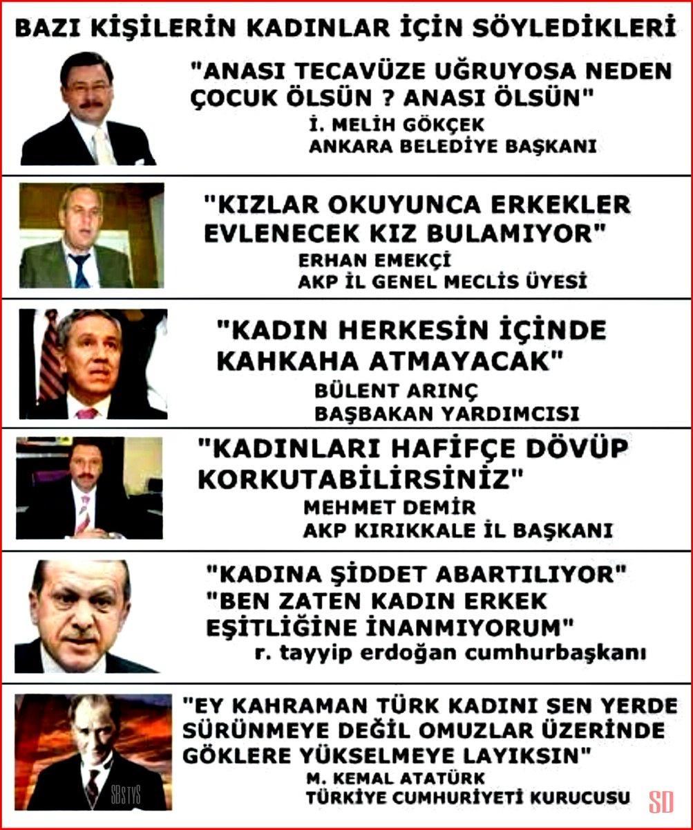 տนɗℯ A Twitter Ey Kahraman Türk Kadını Sen Yerlerde Sürünmeye