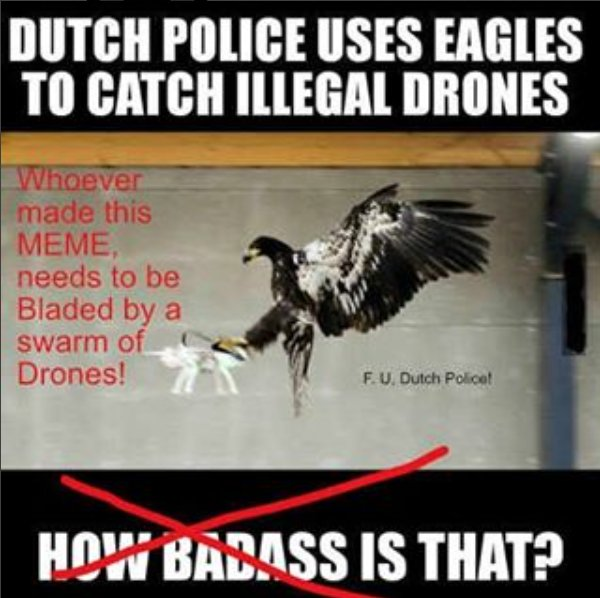 The Peeping Drone ThePeepingDrone