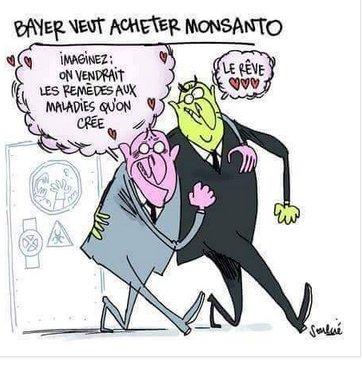 Monsanto / décryptages CsjpQkDWIAAi1DD