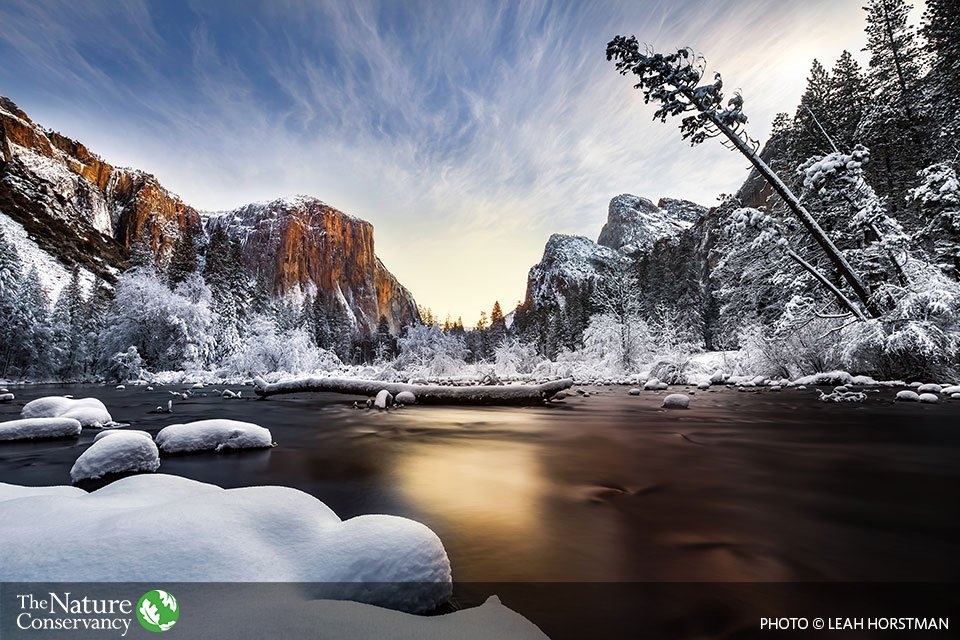 Nature Conservancy (@nature_org) | Twitter
