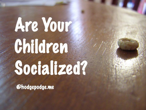 Because people are curious, an answer to Are Your Children Socialized? https://t.co/DVRASislfa #homeschool #ihsnet https://t.co/l3UZRF0q5T