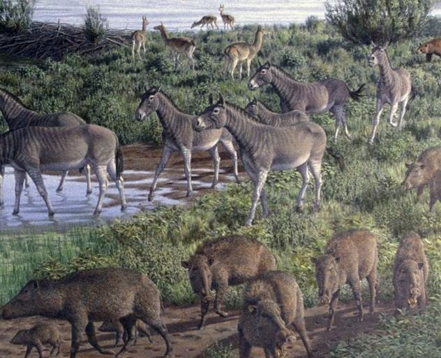 giant animals north america - 864×702