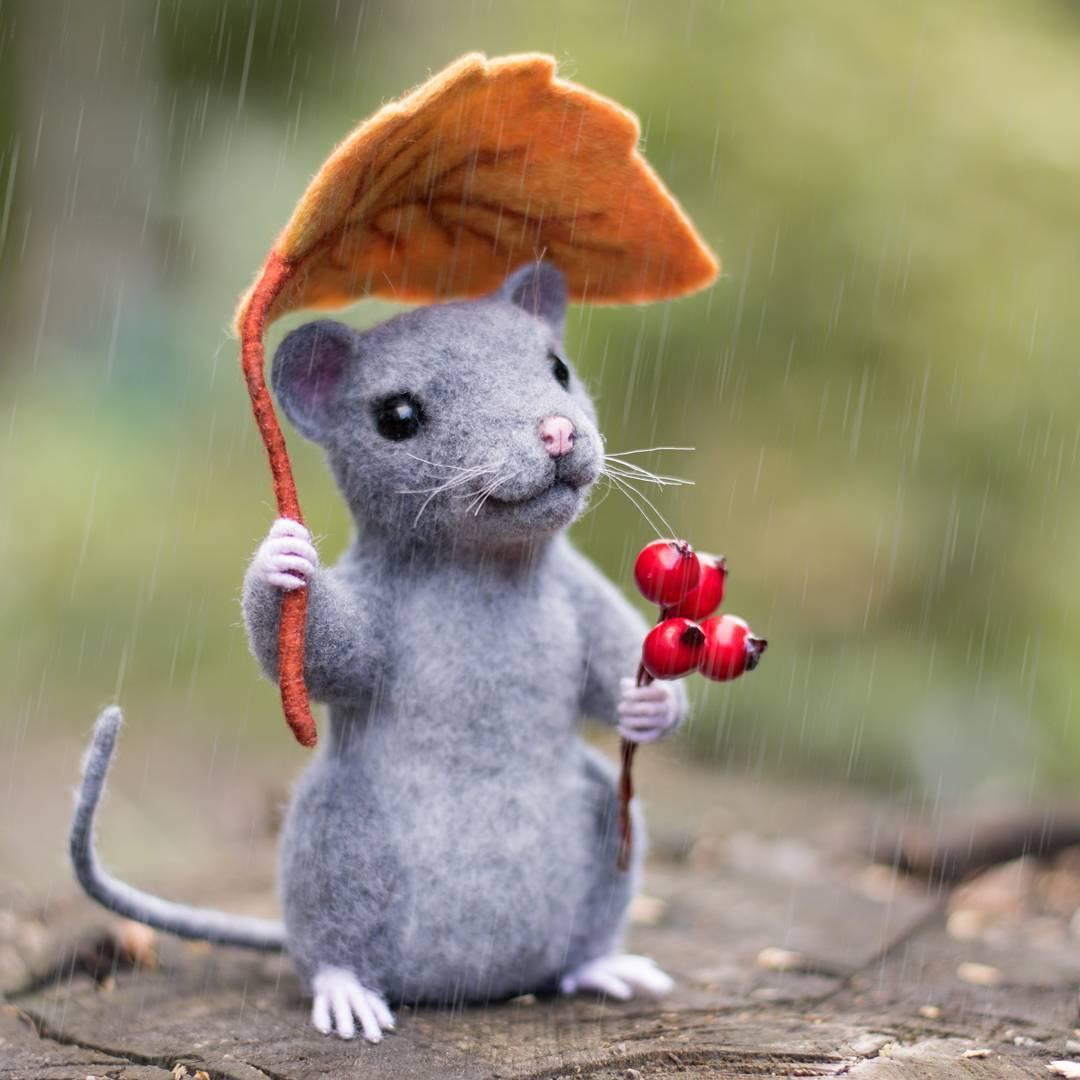 Мышка красивые картинки, поздравления радио
