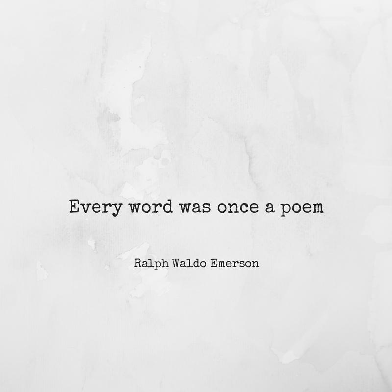 #poetry #poem #poetrylover #literature #writerslife #amwriting #amreading #philosophy #inspiration #beautifulwords