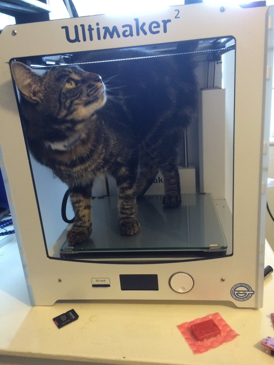 My #3dprintung is getting more lifelike. #Caturday /@UltimakerGB https://t.co/r2oCylnrRy