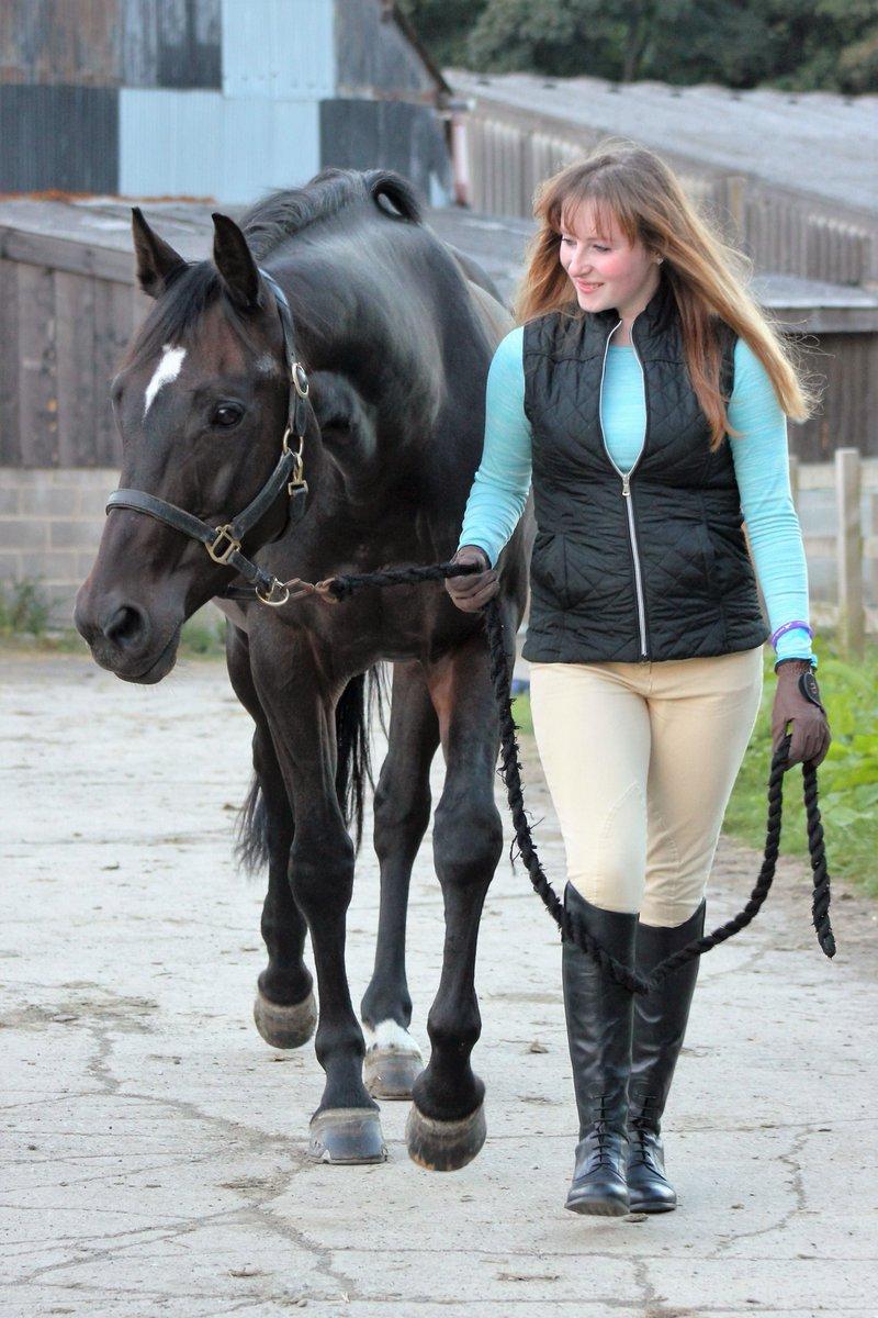 Alanna Clarke Ace Equestrian Twitter