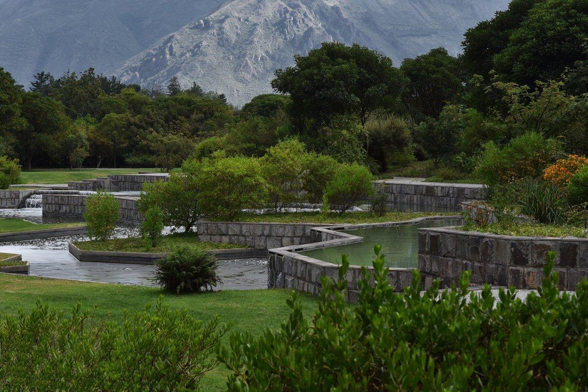 SGD on Twitter Chilean designer Juan Grimm talks to the Garden