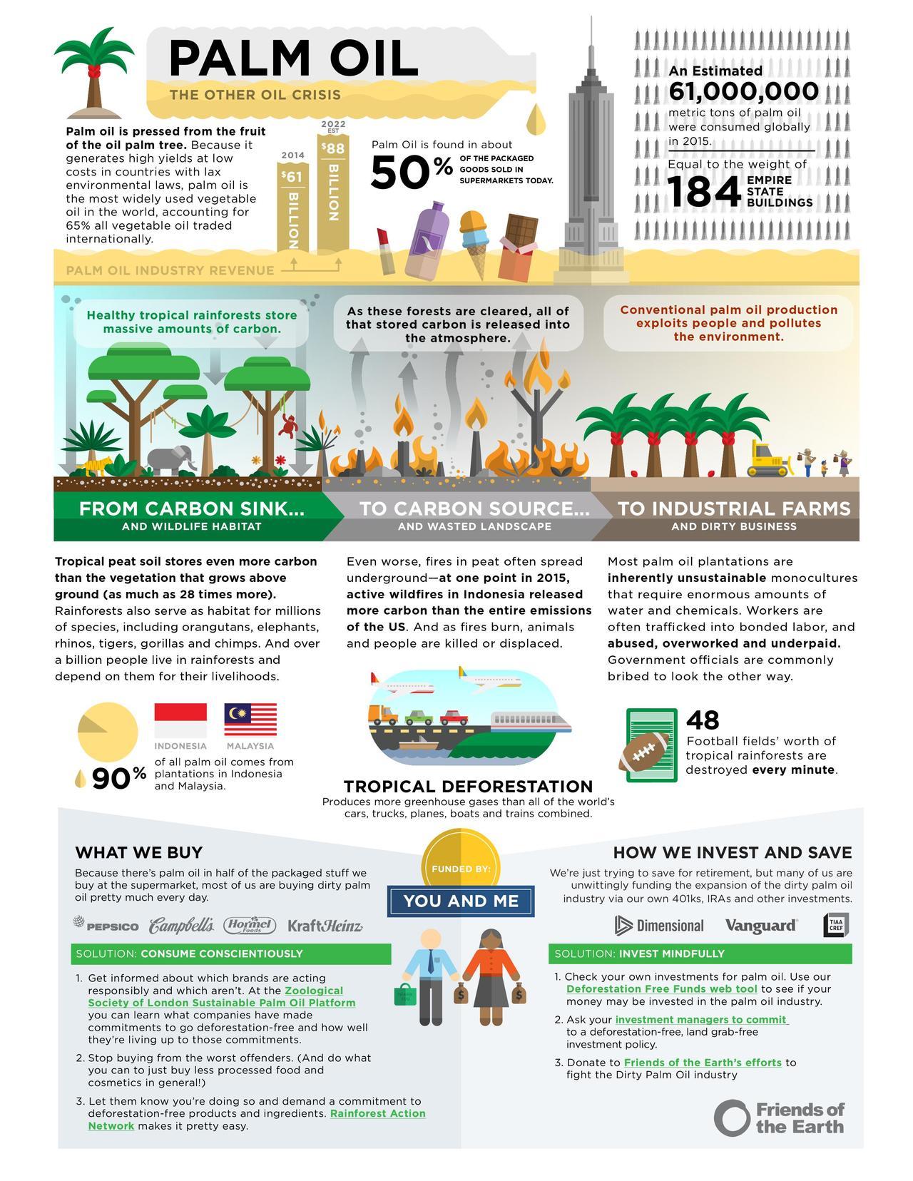 palm oil essay