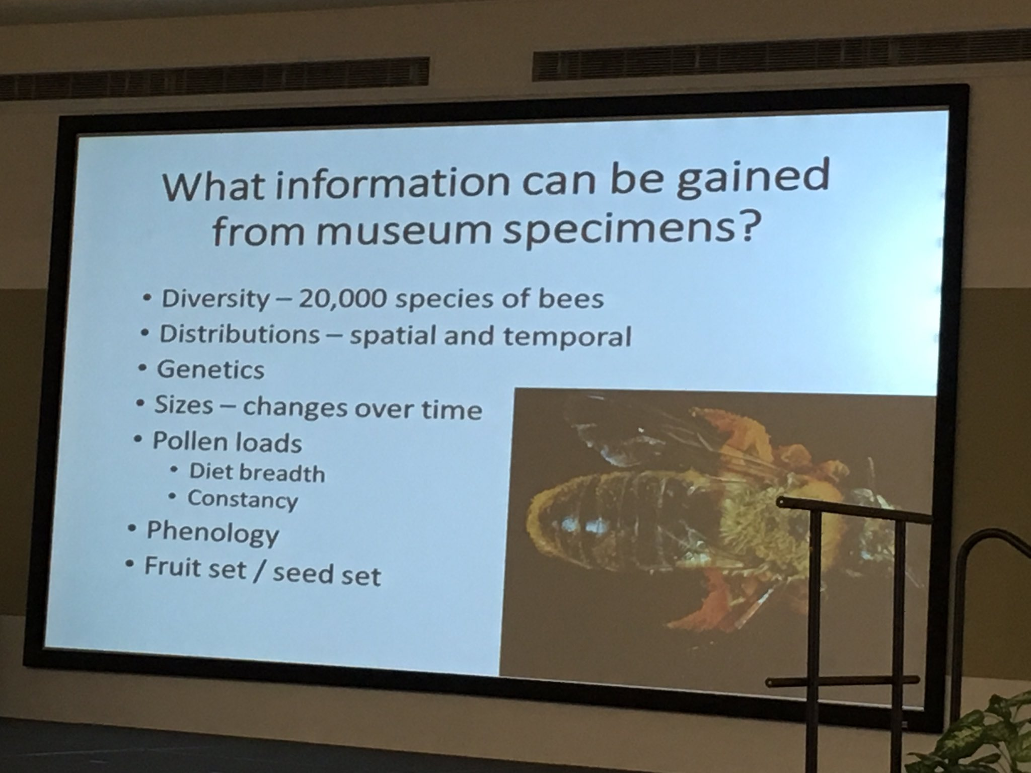 David Inouye at @sci_coll #scicollfood on info that can be gained from museum collections. https://t.co/zqqm1WRnQH