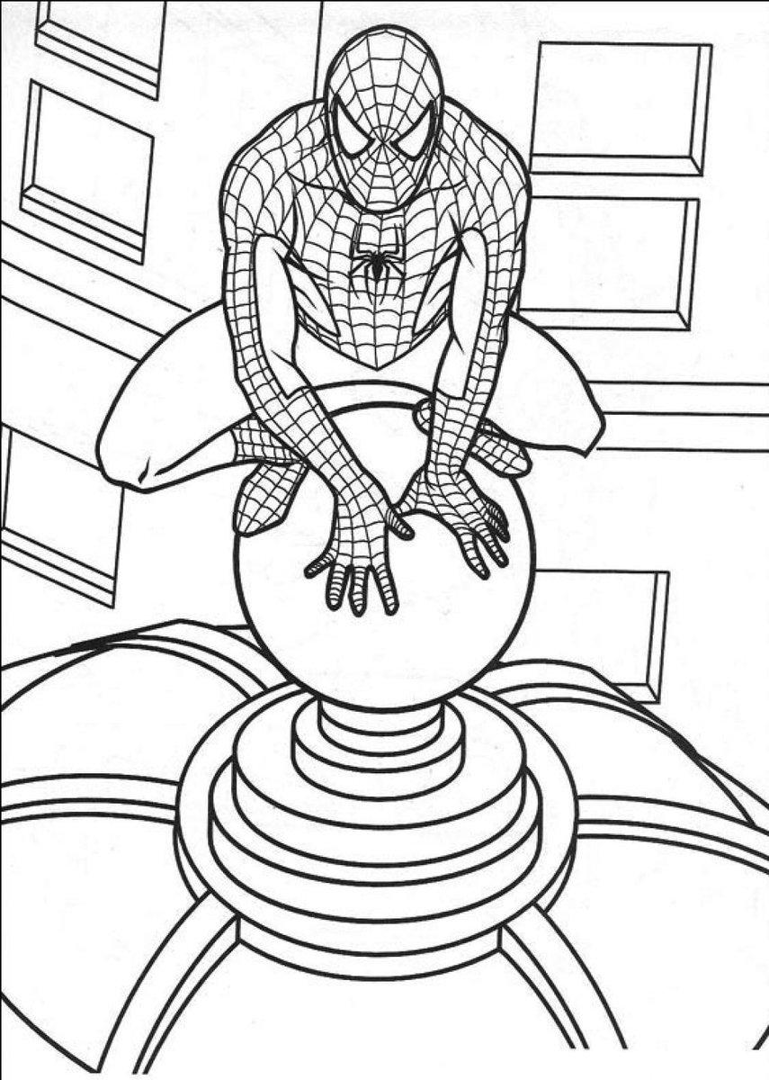 """Kangdamar On Twitter """"Gambar Sketsa Mewarnai Spider Man"""