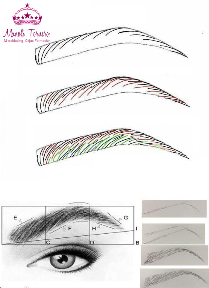 Microblading curso microbladingc twitter - Plantillas para la pared ...