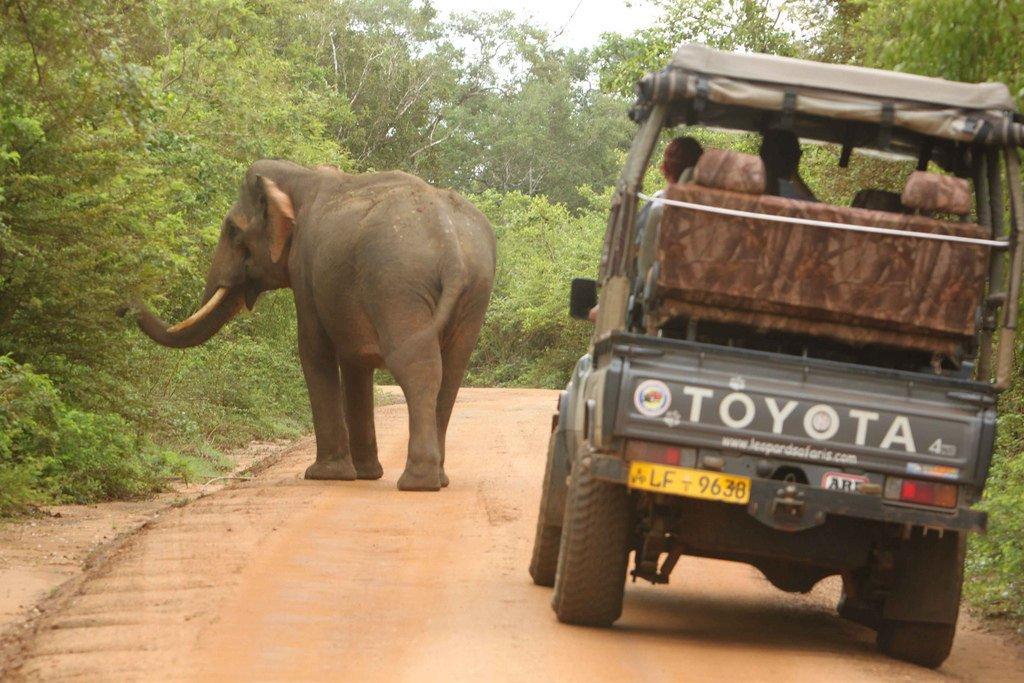 Mahinda Travels