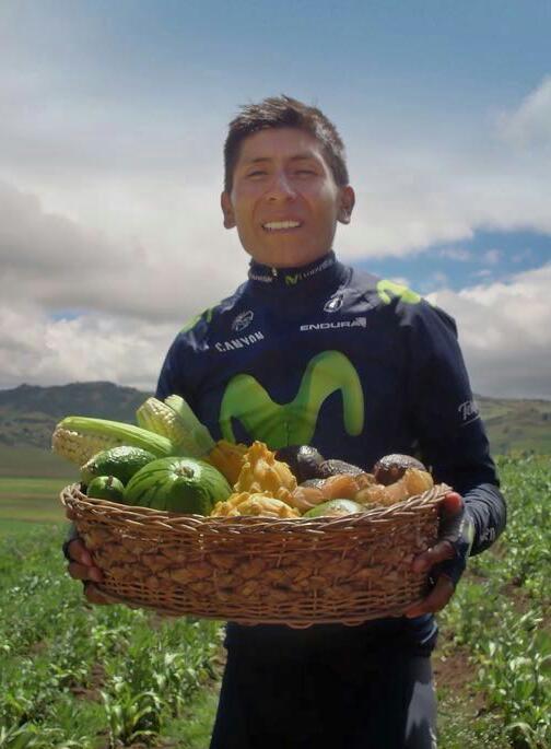 同じ「野菜を持ってる自転車選手」の構図なのに、片方はJA臭、もう片方はホクレン臭(どうでしょう的な意味で)を感じるのはなぜなのか…(´ー`) https://t.co/D43VJRH2Sh