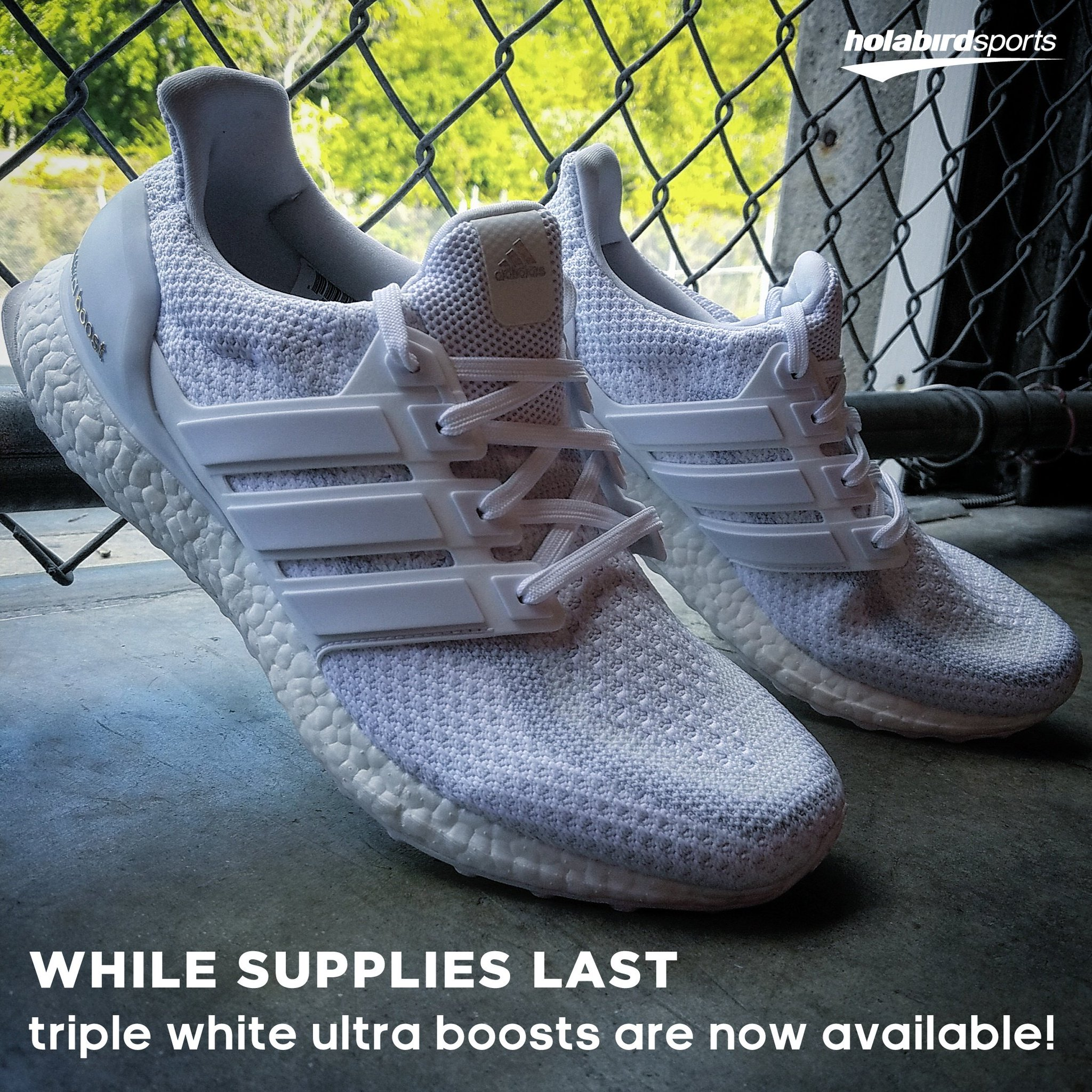 56ac7855da85a ... holabird sports on twitter while supplies last the triplewhite adidas  ultra boosts are now available