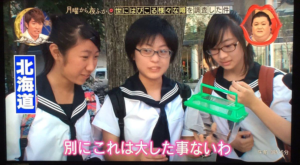 【閲覧注意】マジかよすげぇぇぇwww北海道民にゴキブリを見せた結果www