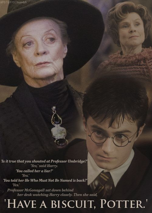 Harry Potter Quotes On Twitter Mcgonagall Have A Biscuit Potter