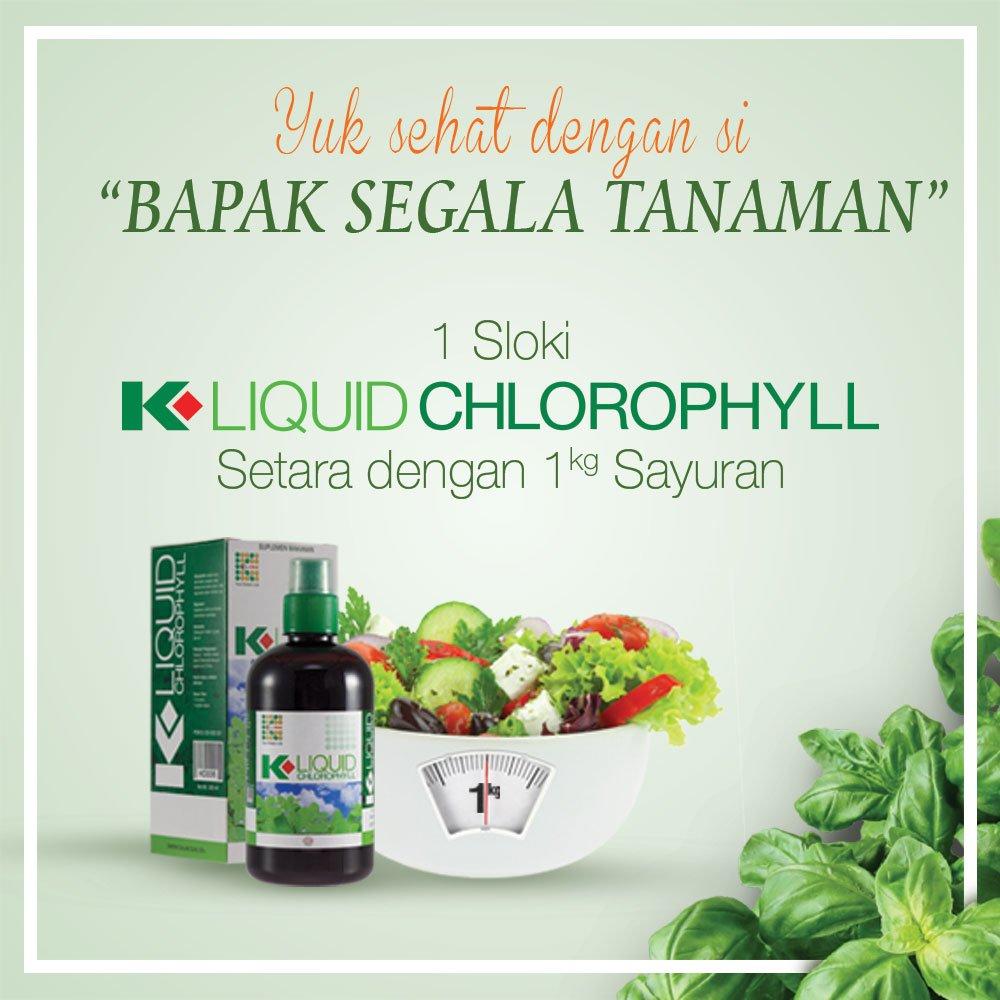 K Link Indonesia On Twitter Konsumsi 1 Sloki Liquid Chlorophyll 100 Am 4 Oct 2016