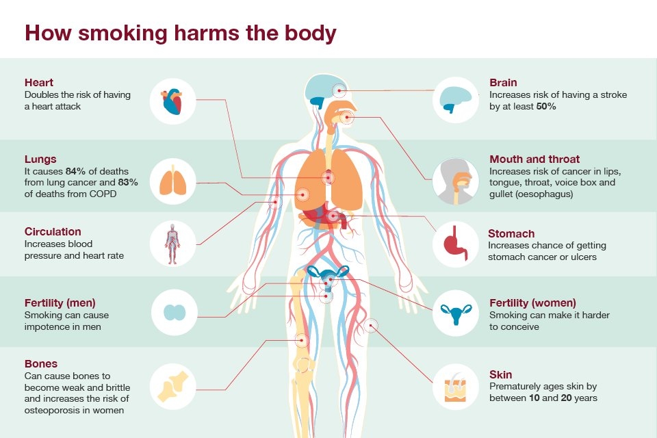 smoking the harm and effects Why is smoking bad for me  but experts agree it's unlikely to be more than 5% of the harm of smoking and e-cigarettes can be  what are the effects what are.
