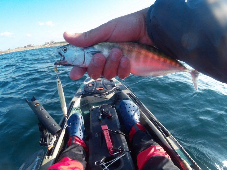 карты рыбалки во  новороссийске