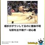 エドモンド本田かよ!相撲というか格ゲーの世界じゃないか!