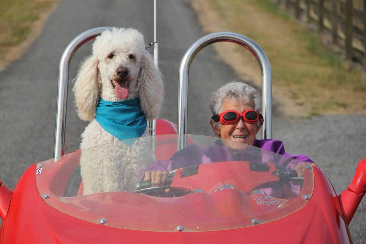 Facebook Miss Norma: morta la nonna con cancro contro la chemioterapia
