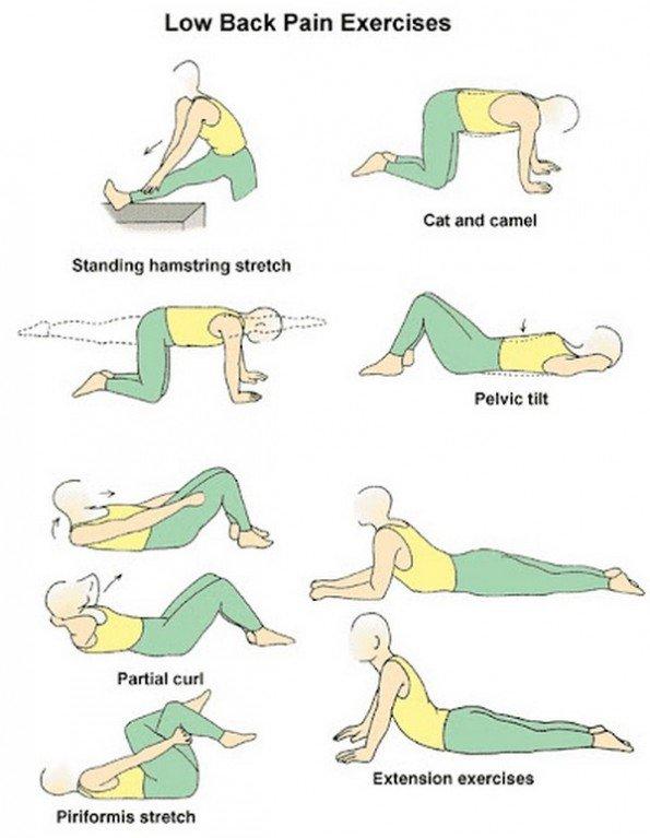 Yoga Poses Back Pain Yogaposesbackpa Twitter