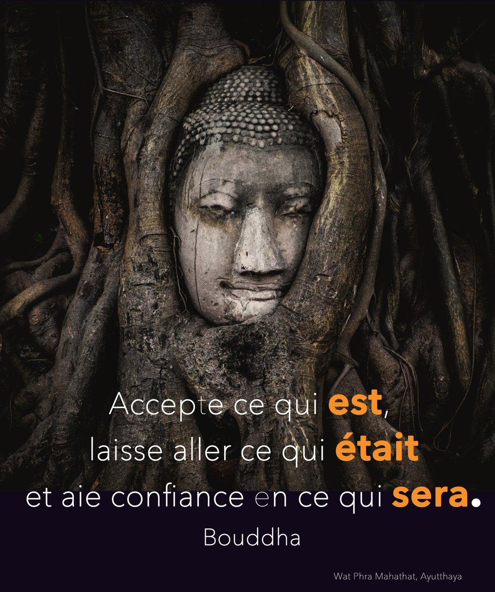 L Image De L Art On Twitter Citation Accepte Ce Qui Est