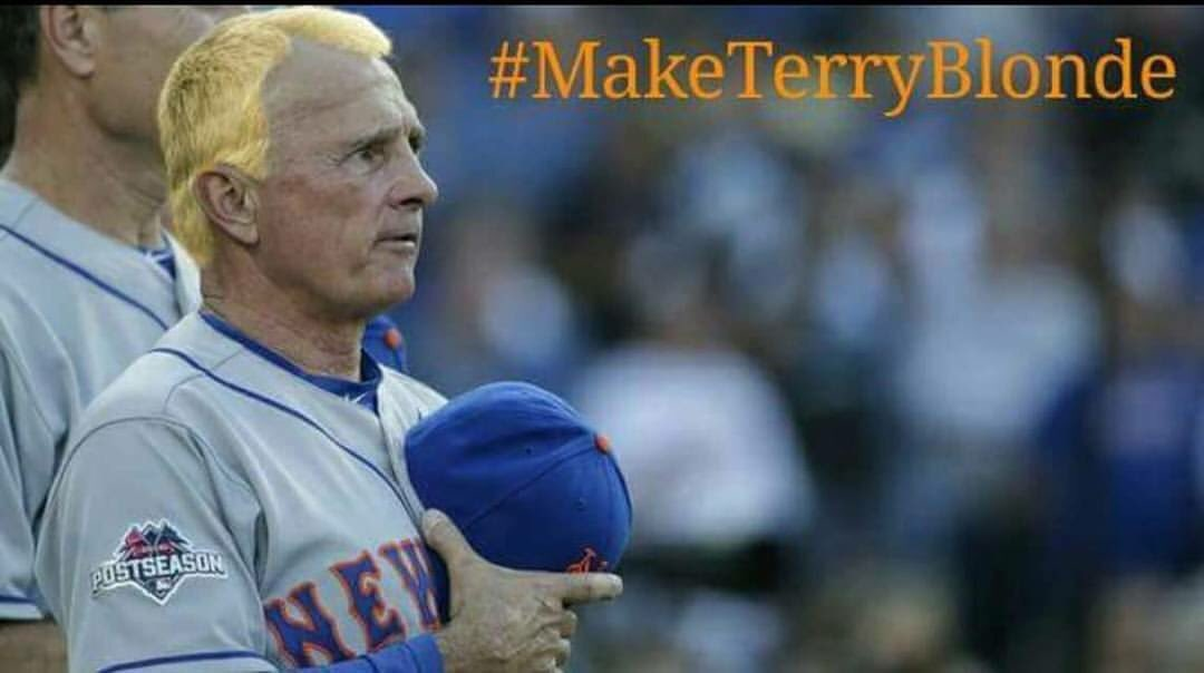 YES! @Mets, make this happen! You can clinch, Terry dyes his hair!!! #MakeTerryBlonde RT RT RT!!! https://t.co/32baHPHcoq