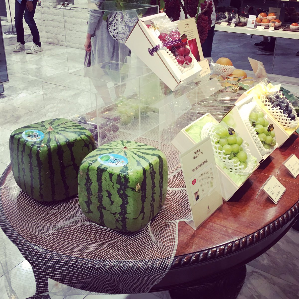 Square watermelons! And the grapes are $400 each basket - talk about fancy fruit #travel #tokyo #travelphotography