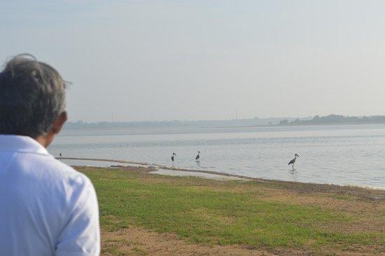 Heritage Lake View