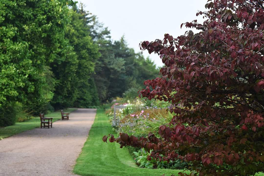 Botanic Garden Section Supervisor (2 Positions) Job With St Andrews Botanic  Garden St Andrews, Fife, ...