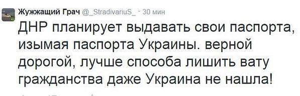 Оккупационные власти Крыма хотят закрыть Ялтинский дельфинарий - Цензор.НЕТ 979