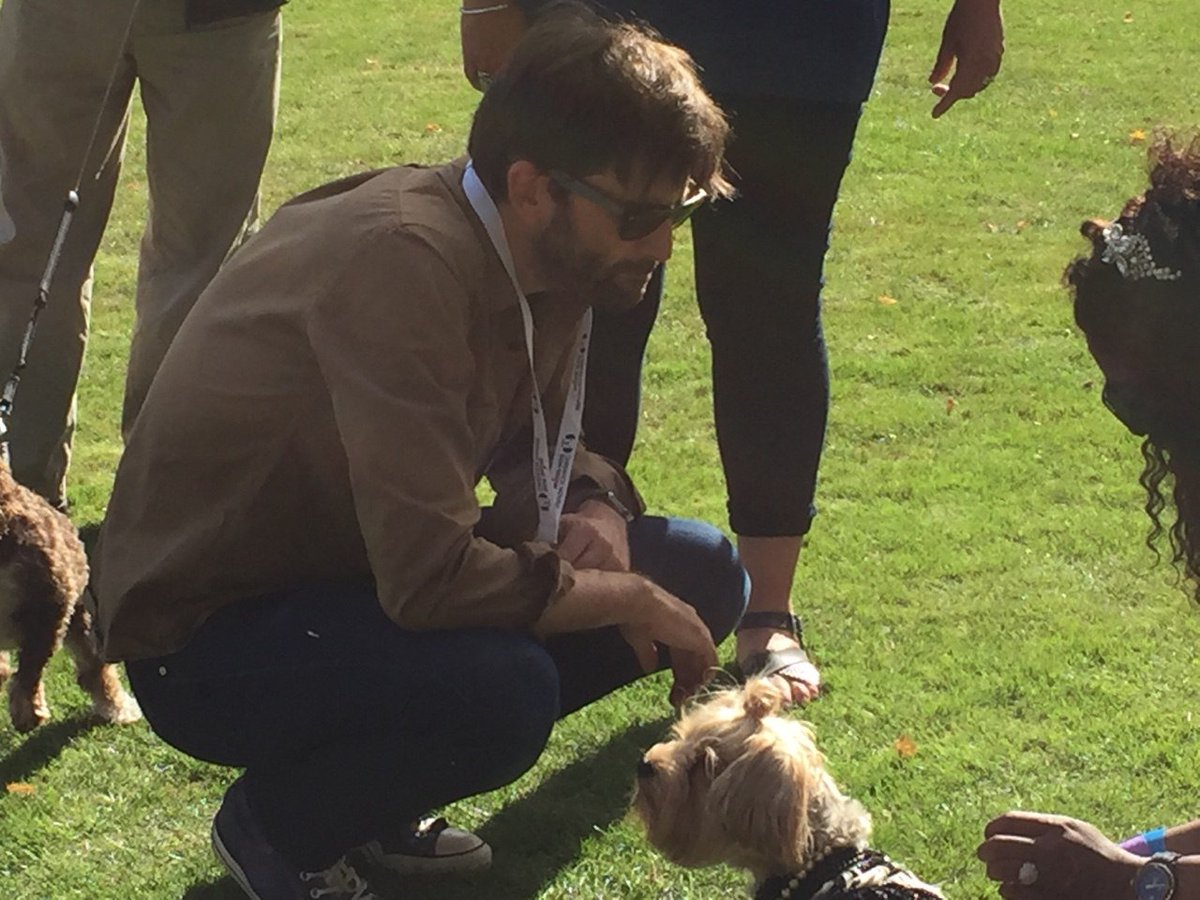 David Tennant at Chiswick House Dog Show