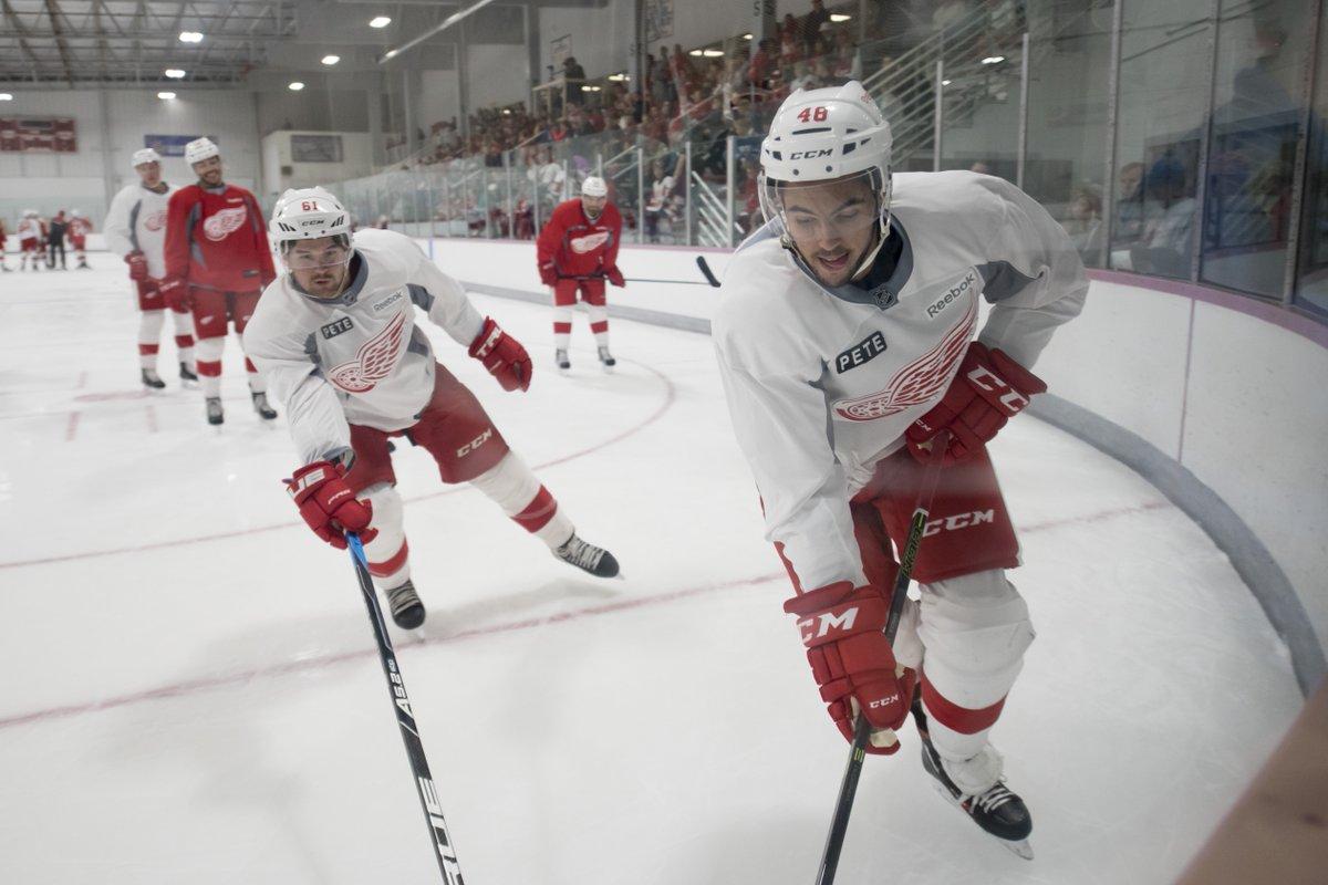 Defensemen Xavier Ouellet, Ryan Sproul on Red Wings' radar. From @tkulfan