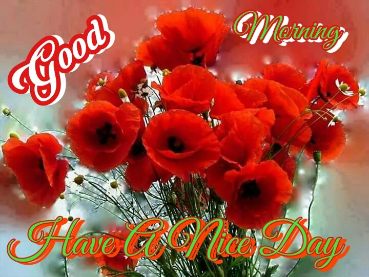 Sanjeev Sharma On Twitter Good Morning To All My Friends Have A