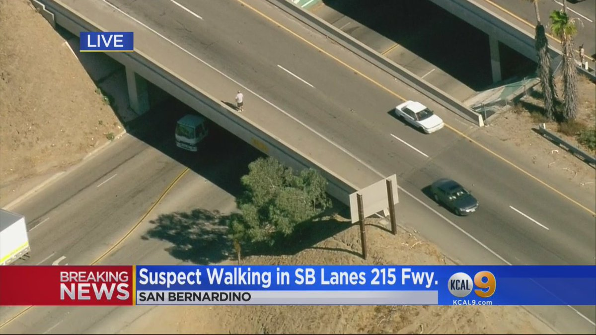 PURSUIT UPDATE: Suspect now walking along Palm Ave overpass near 215 Fwy with long object in his hand