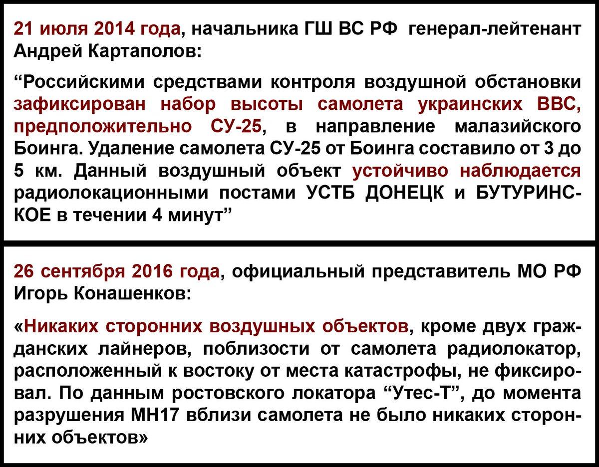 Сторонних воздушных объектов возле малайзийского самолета не было, - российский эксперт опроверг версию Минобороны РФ об украинском штурмовике - Цензор.НЕТ 8289