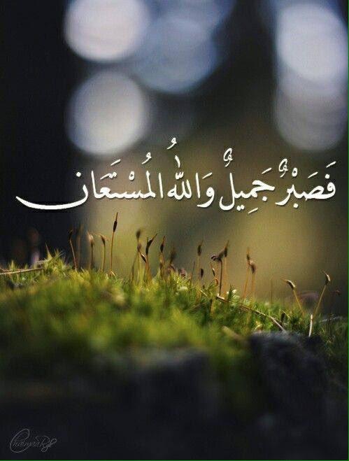 فصبر جميل والله المستعان 15