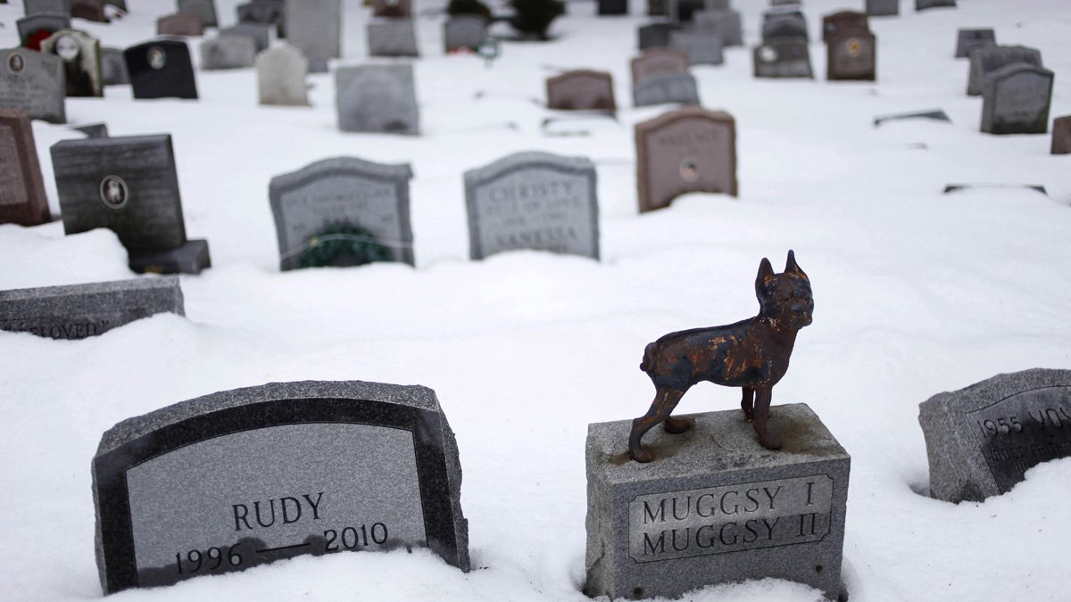New Yorkers can now be buried with the remains of their pets